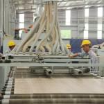 Sản phẩm ván sàn Việt Nam trên thị trường thế giới